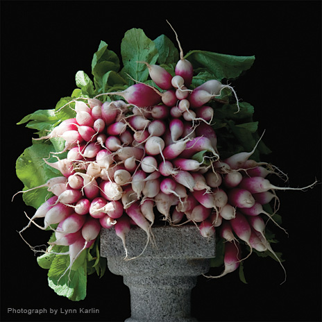 2013 Simply Raw wall calendar - Radishes