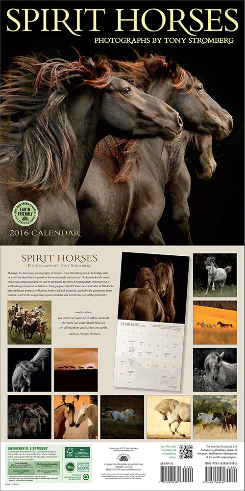 Spirit Horses 2016 wall calendar by Tony Stromberg