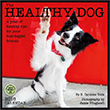 Healthy Dog 2016 wall calendar