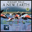 A New Earth 2016 wall calendar