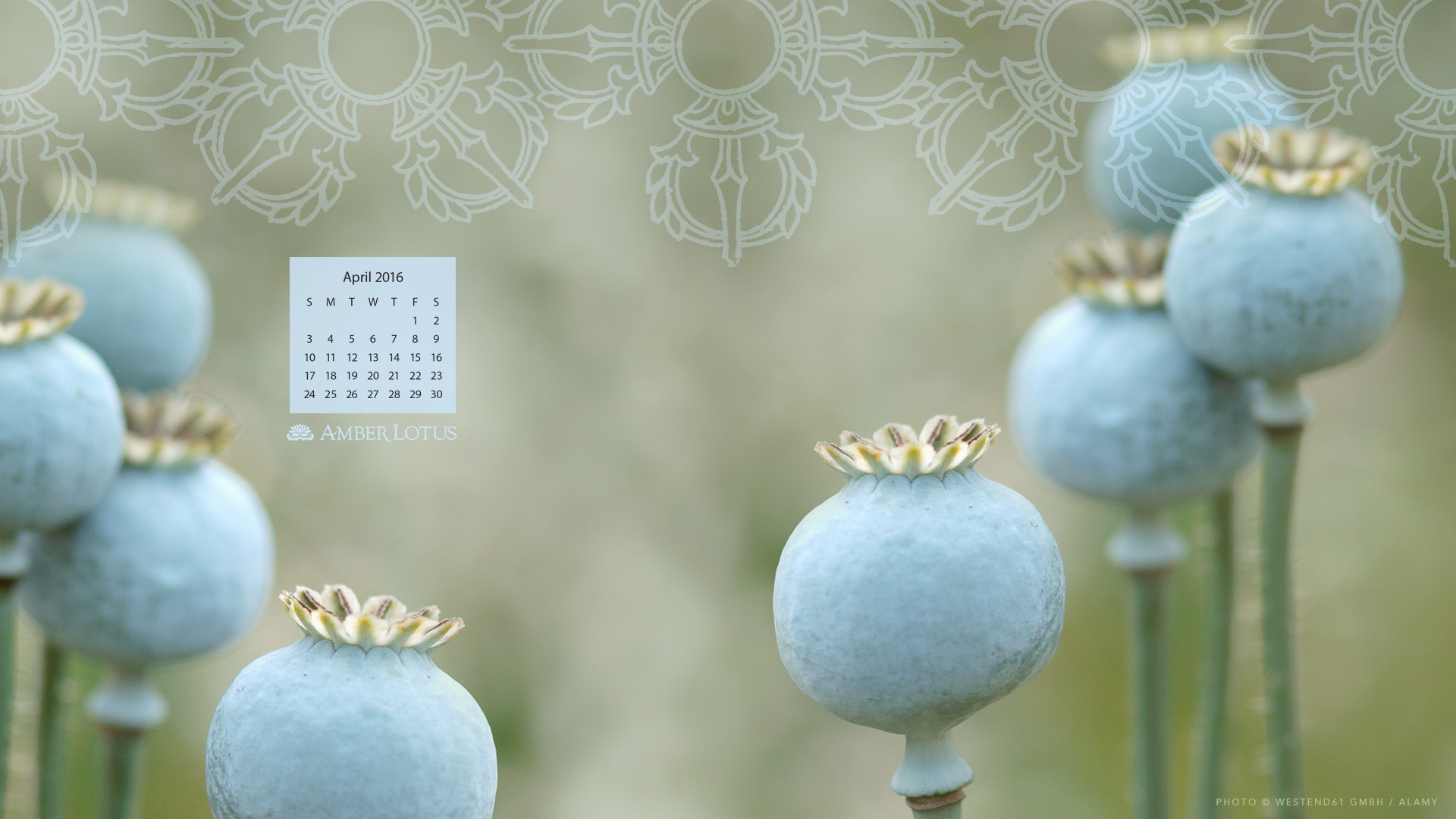 Desktop Calendar June 2016